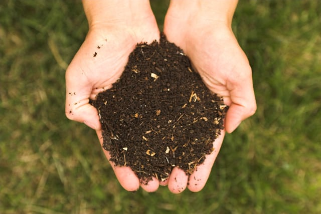 A Super Simple Guide To Composting