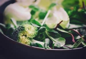 Broccoli Fall Vegetables