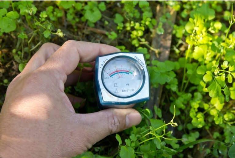 Best Soil Moisture Sensors 1