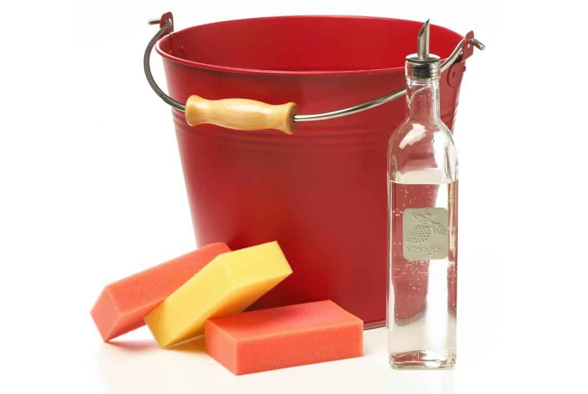 Cleaning Garden Tools with Vinegar 1
