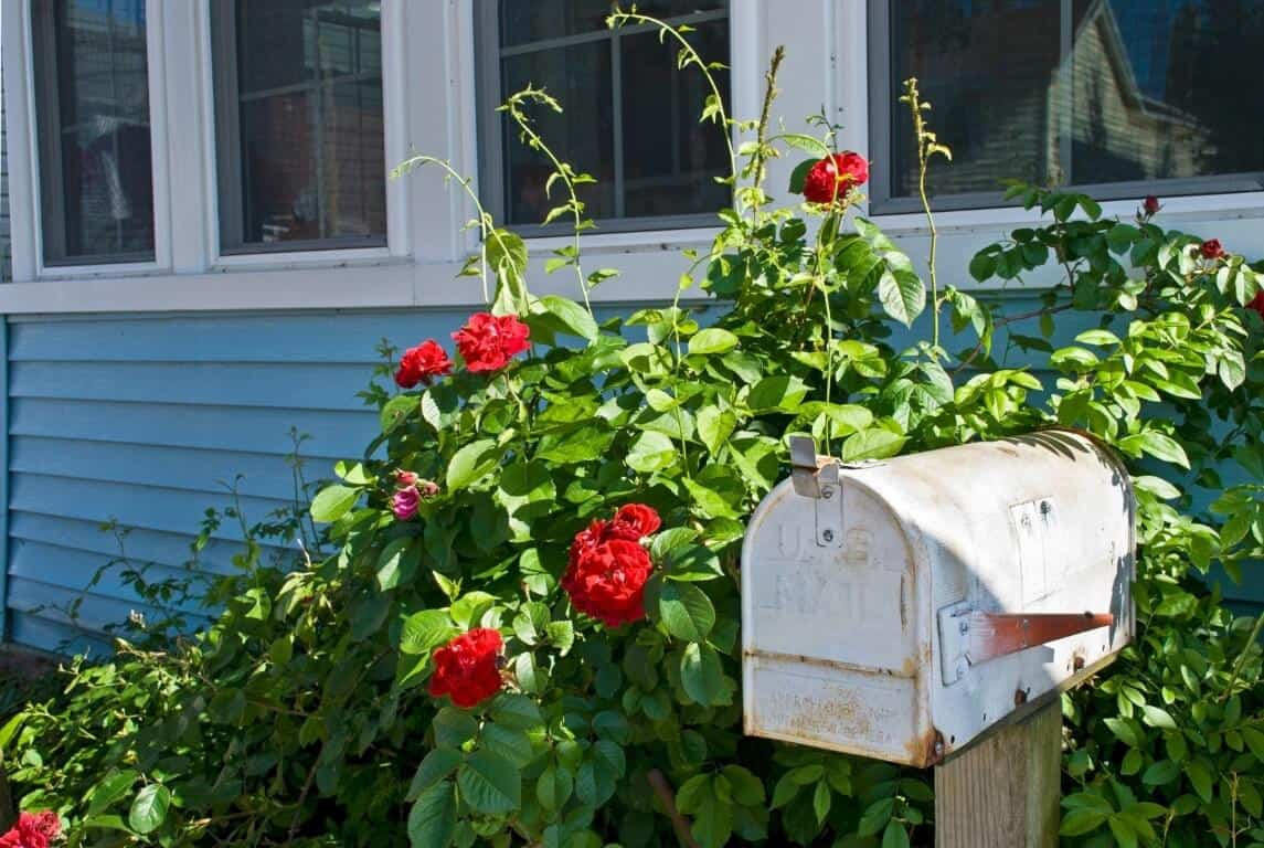 Use a small mailbox in your garden