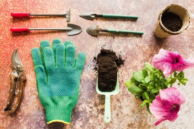 Borax usages in your Garden