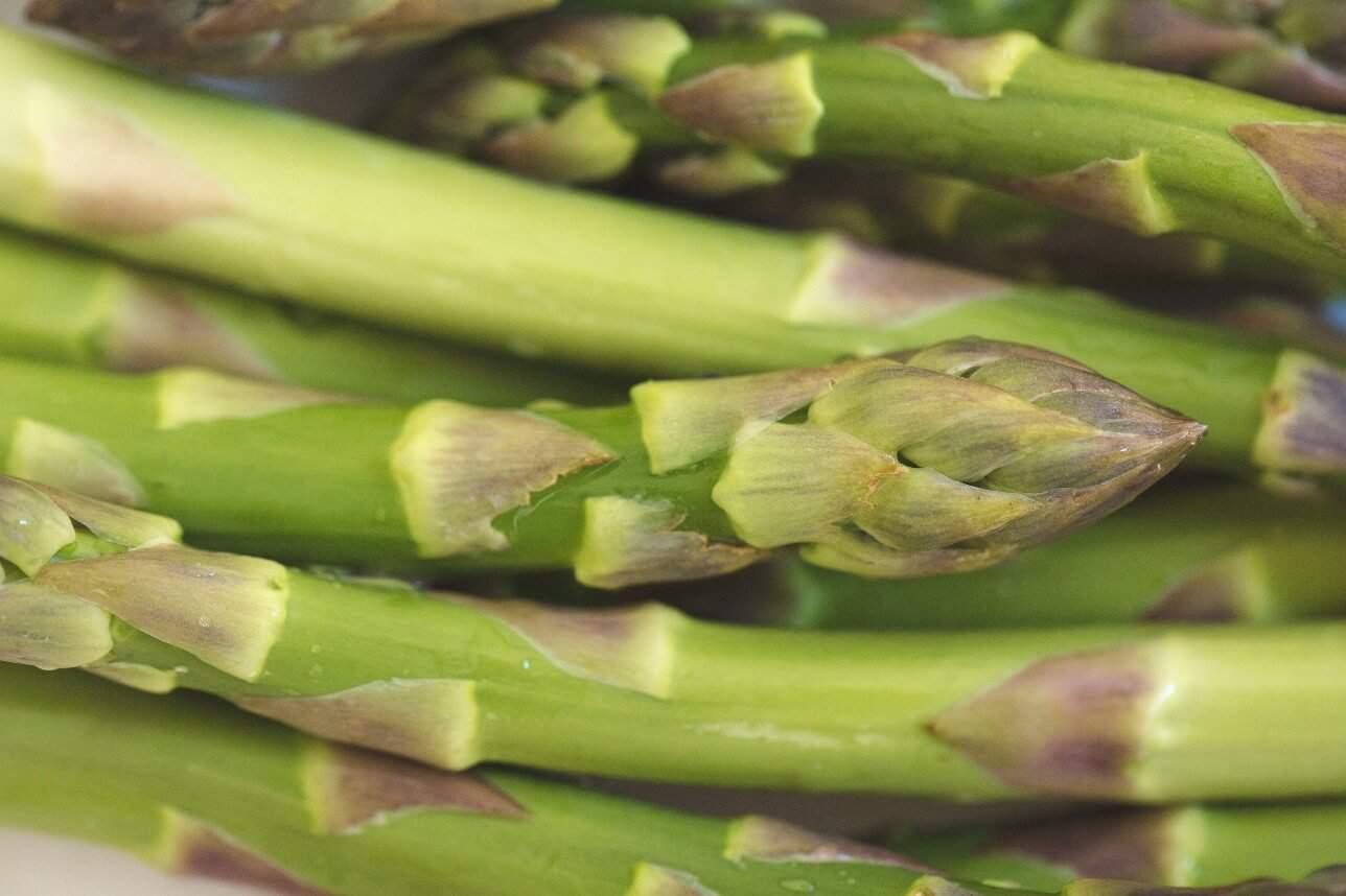 Grow Asparagus in a Raised Bed