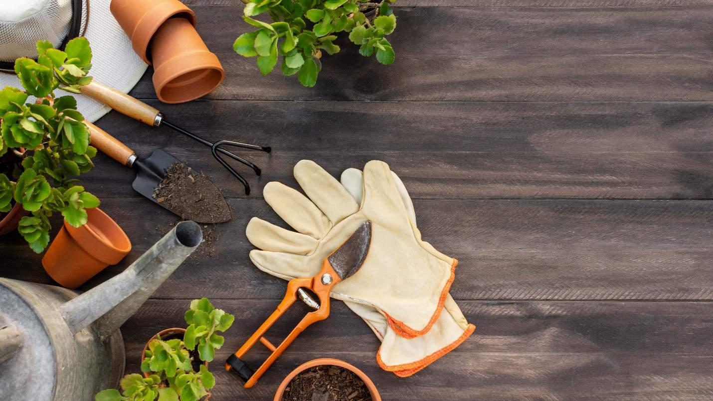 Gardening Kits for Best Usage